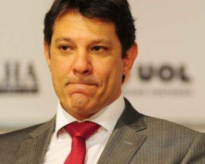 Haddad e Bolsonaro aparecem empatados em nova pesquisa